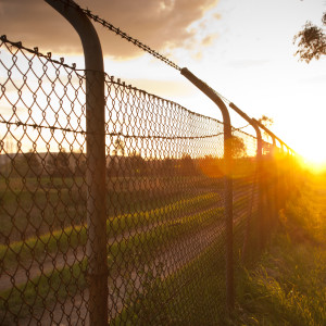 Old wire fence with the sun streaming alongside it